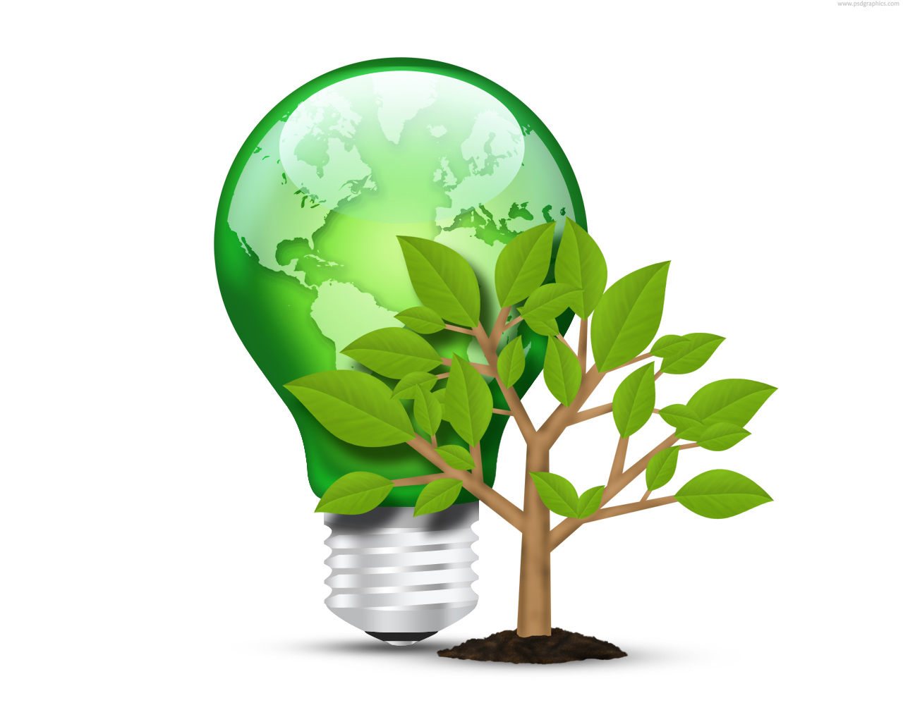 Green Light Bulb And Tree Psd Psdgraphics