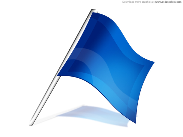 flag report
