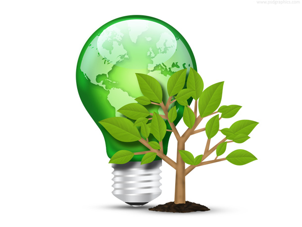 Green light bulb and tree with leaves